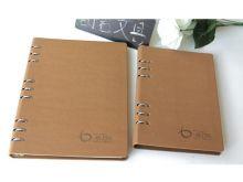 Notebook 21